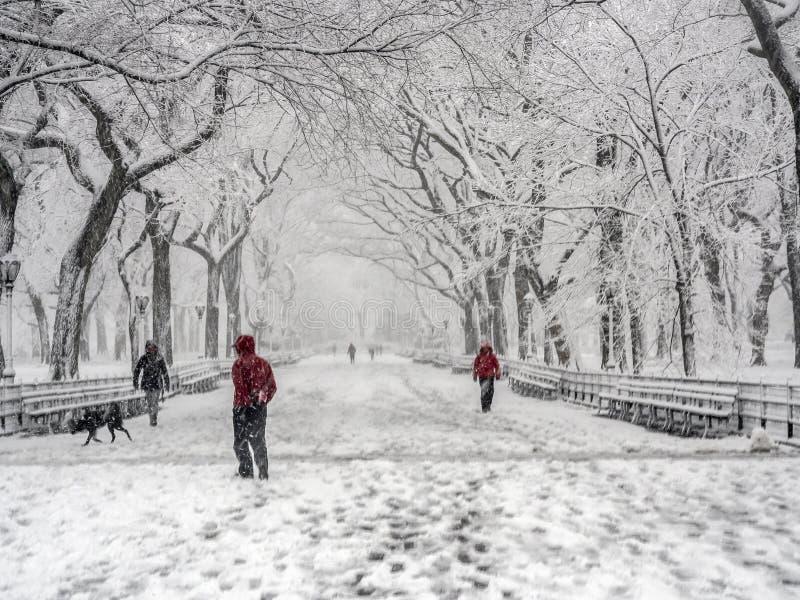 Central Park New York City, Manhattan durante o blizzard fotografia de stock royalty free