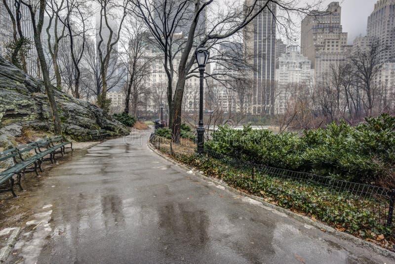 Central Park, New York City nach Regensturm lizenzfreie stockfotos