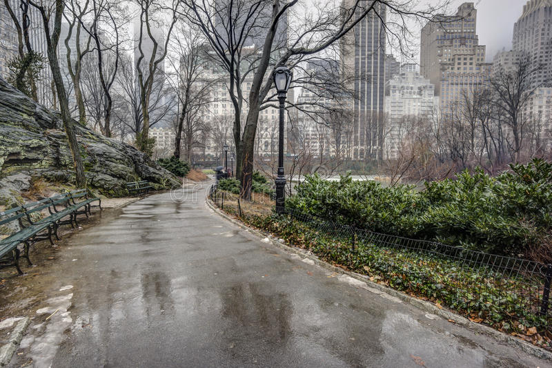 Central Park, New York City after rain storm royalty free stock photos