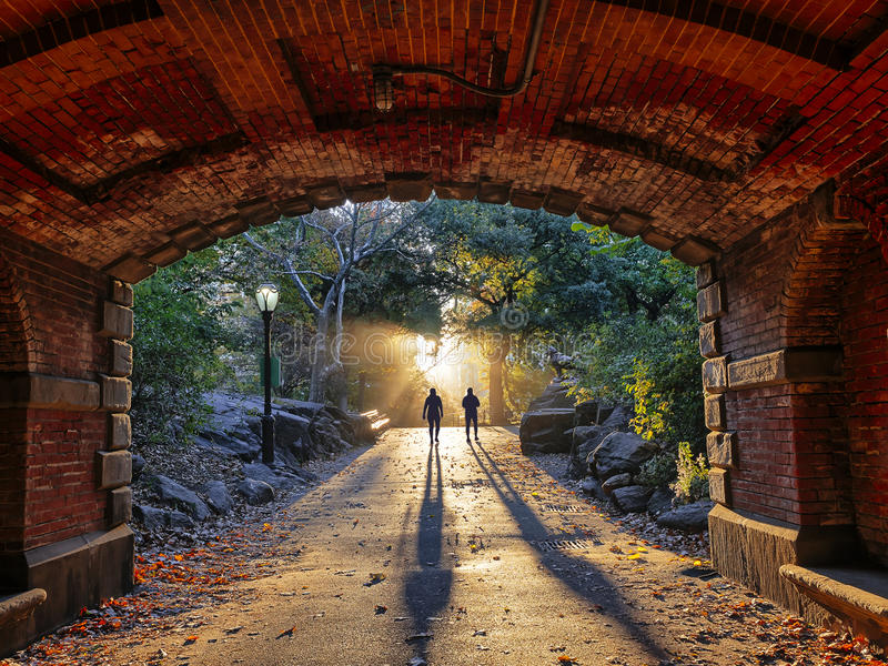 Central Park, New York City summer royalty free stock image