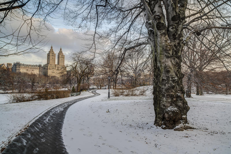 Central Park, New York City winter royalty free stock photo