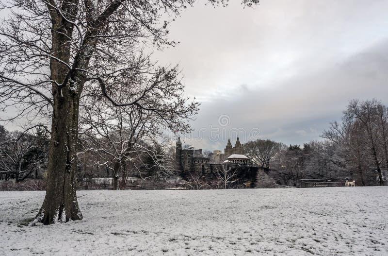 Central Park, New- York Citybelvedere-Schloss lizenzfreie stockfotografie