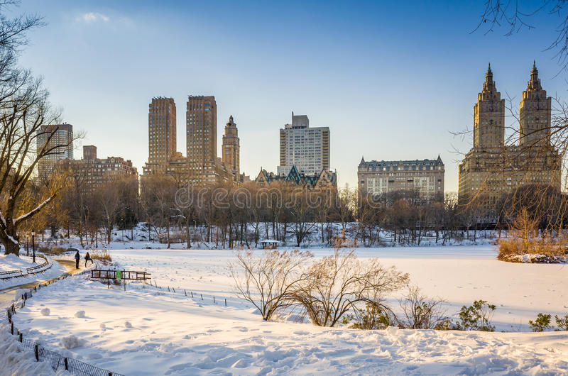 Central Park - New York nell'inverno immagine stock