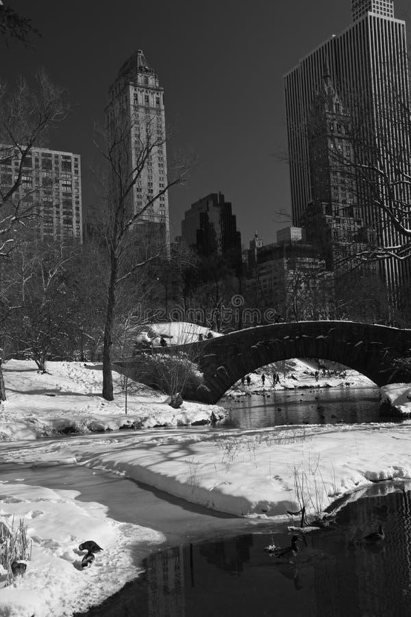 Central Park, New York, neve ed inverno fotografia stock