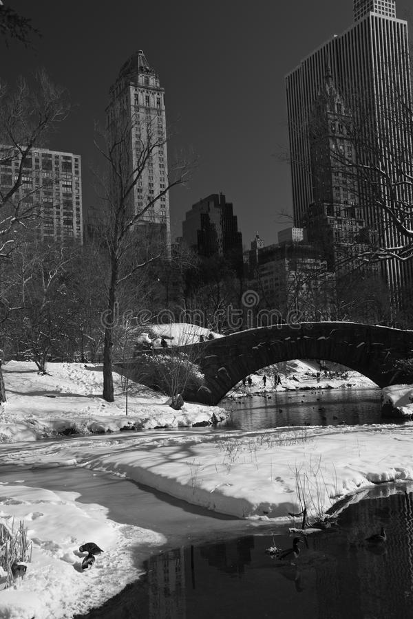 Central Park, New york, snow and winter stock photo