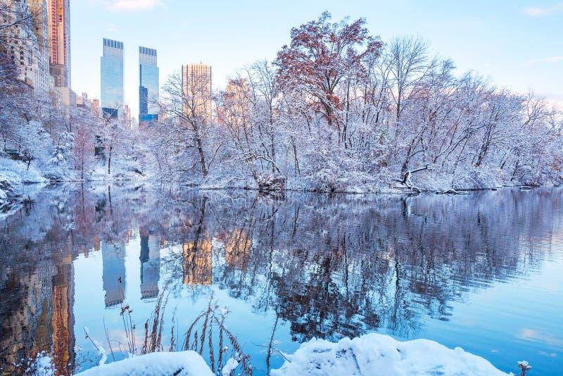 Central Park New York U.S.A. nell'inverno coperto di neve immagini stock libere da diritti