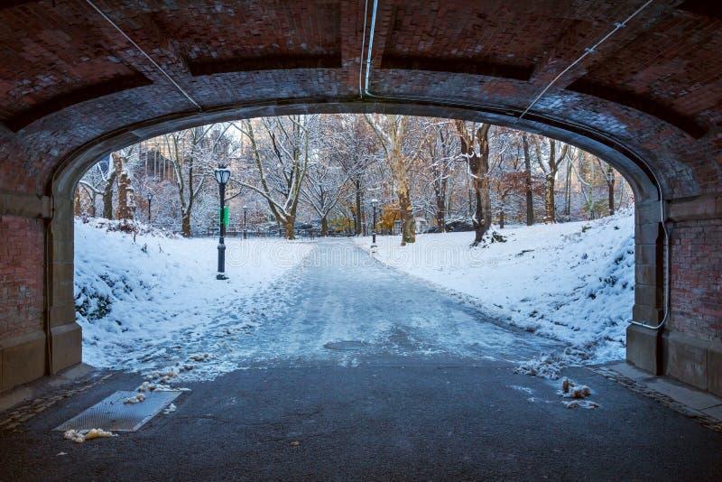 Central Park New York USA i vintern som täckas med snö royaltyfri bild