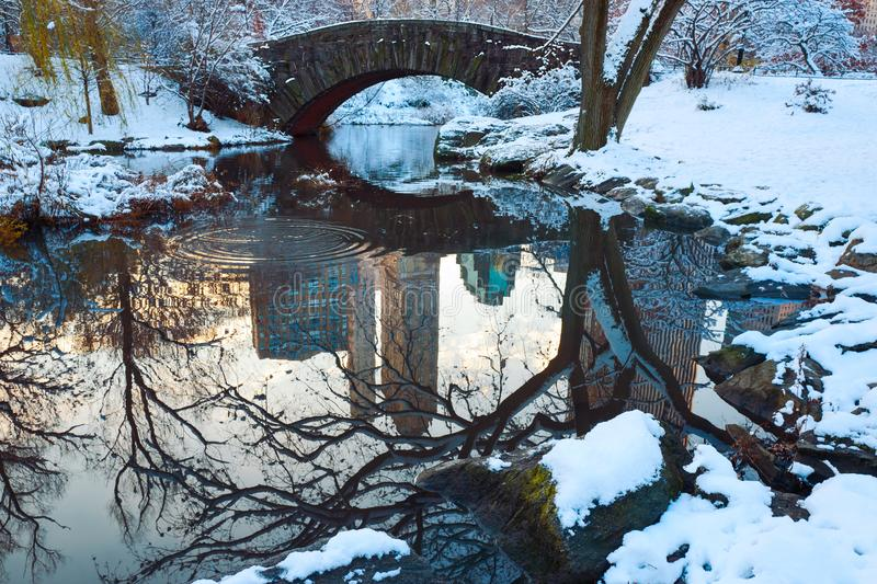 Central Park. New York. USA in winter. Covered with snow royalty free stock image
