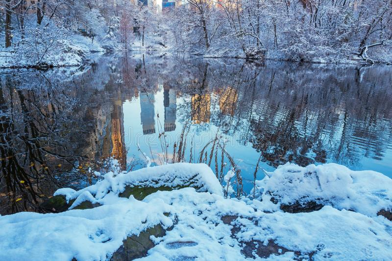 Central Park. New York. USA in winter covered with snow. Central Park. New York. USA in early winter covered with snow stock image