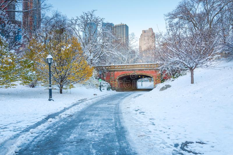Central Park. New York. USA in winter covered with snow. Central Park. New York. USA in early winter covered with snow stock photo