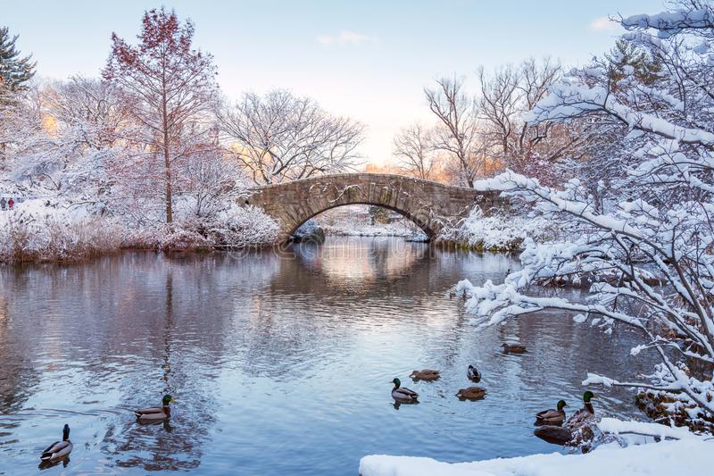 Central Park. New York. USA in winter covered with snow. Central Park. New York. USA in winter covered with white snow. Gapstow bridge royalty free stock photography