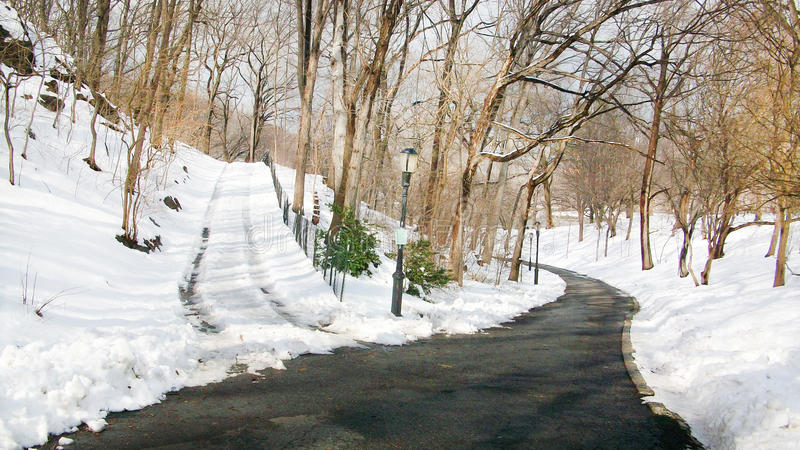 Central Park New York stock photo