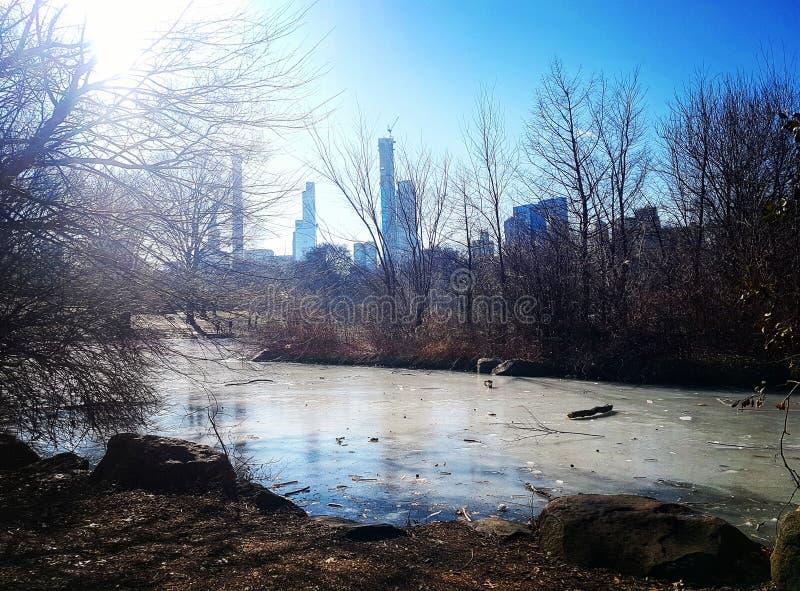 Central Park immagini stock libere da diritti
