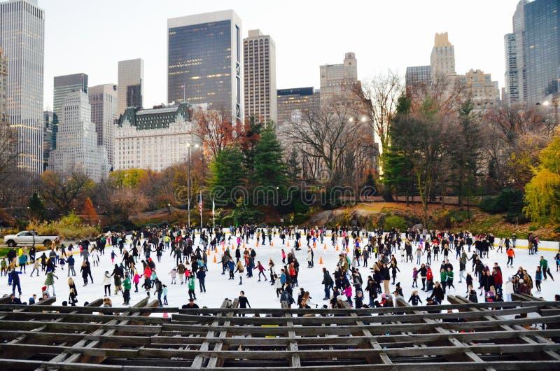Central Park no inverno, New York City fotografia de stock