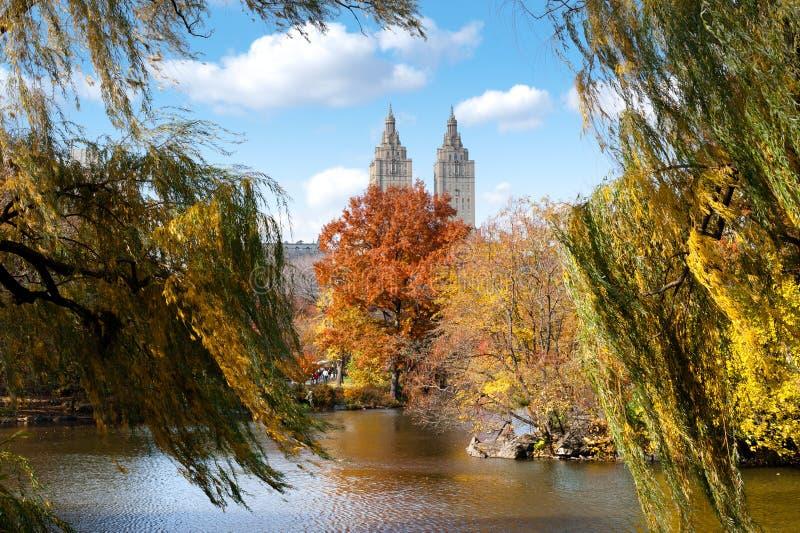 Central Park no outono foto de stock royalty free