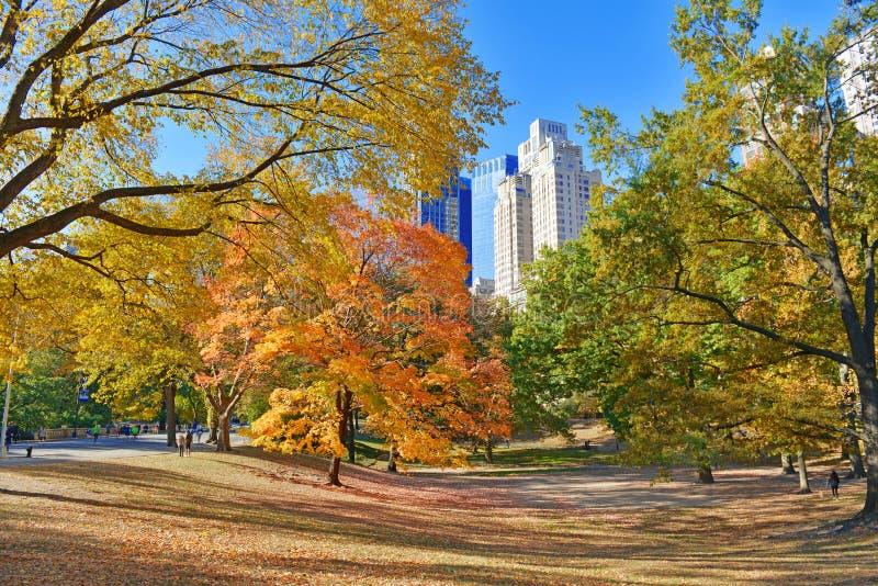 Central Park no outono, New York imagem de stock