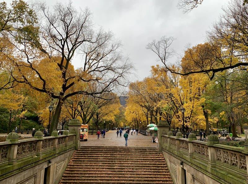 Central Park no outono, New York City imagem de stock