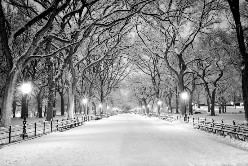 Central Park, NY предусматриванное в снеге на зоре стоковое фото