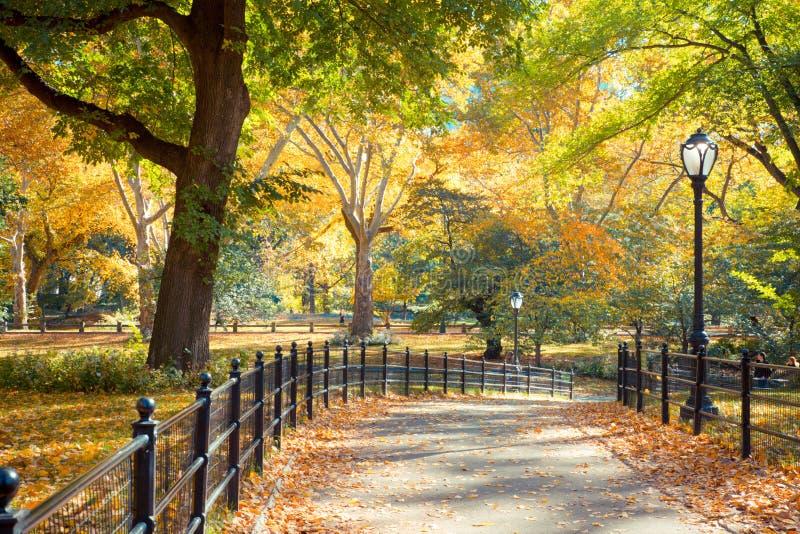 Central Park NY arkivfoto
