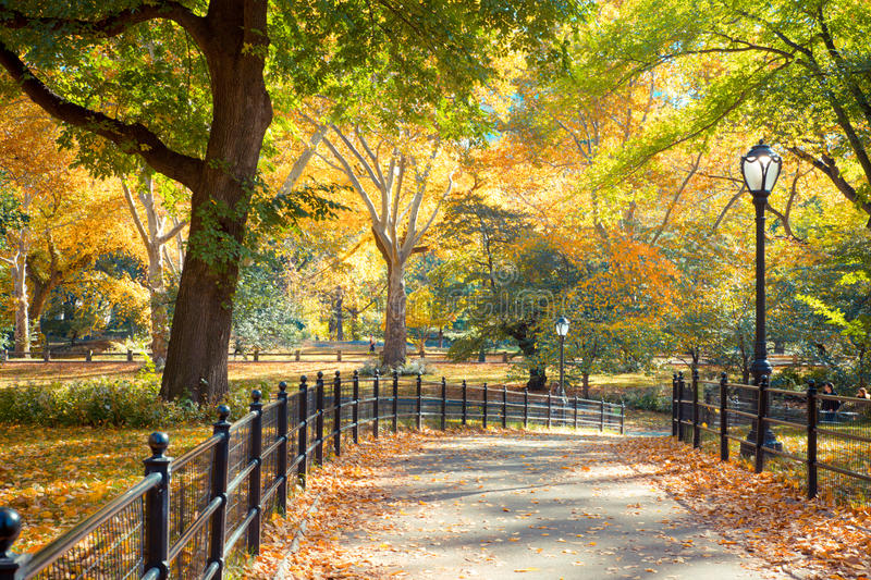 Central Park NY. Beautiful autumn scene from Central Park, New York City, Manhattan stock photo