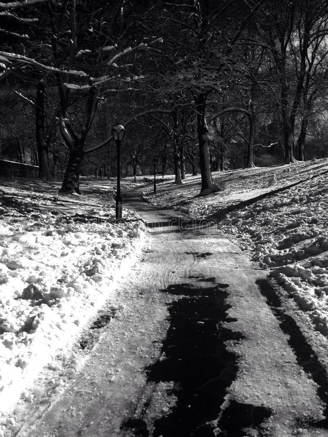 Central Park, NYC royalty-vrije stock foto