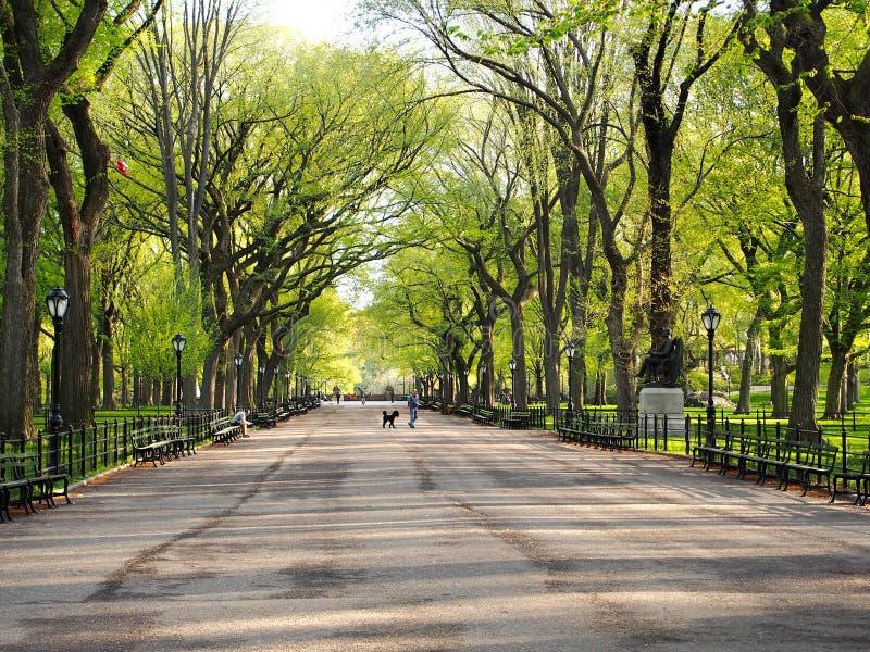 Central Park nyc stockfotografie