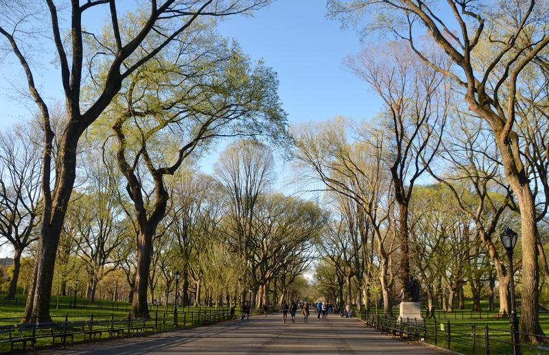 Central Park, NYC imagem de stock royalty free