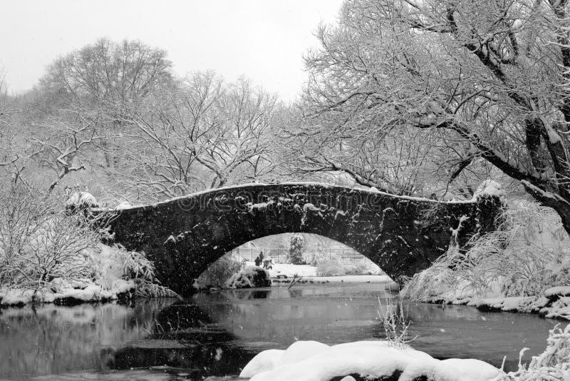 Central Park - NYC después de la tormenta de la nieve fotos de archivo libres de regalías