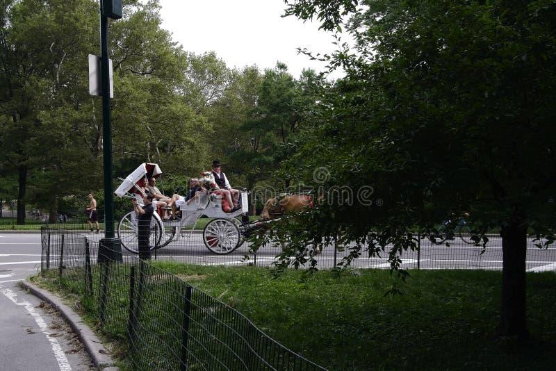 Central Park NYC pedicabs i frachty fotografia royalty free