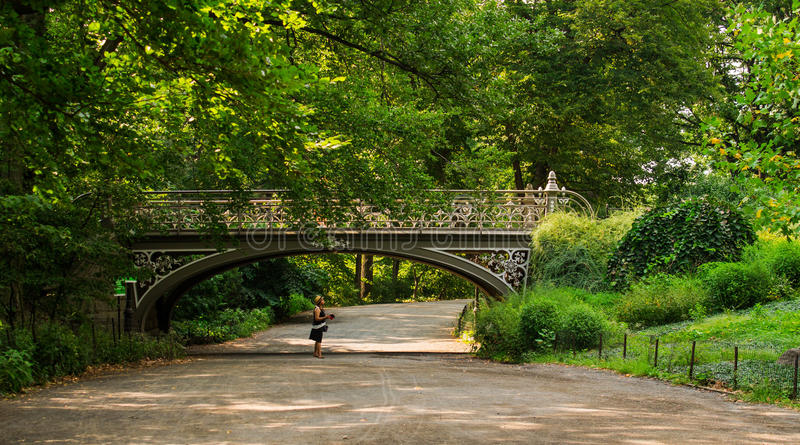 Central Park, NYC royalty free stock images