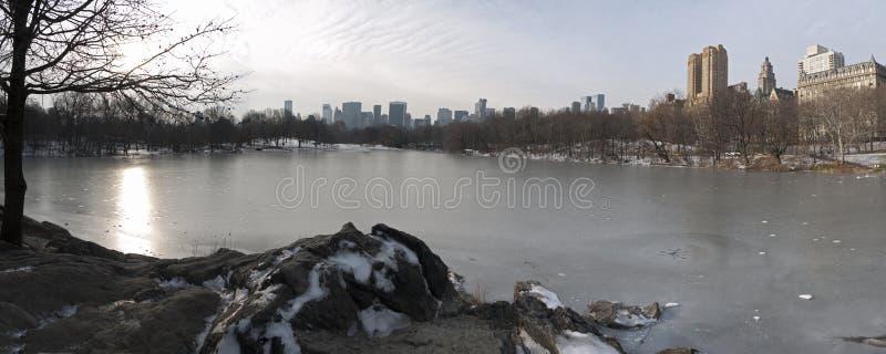 Central Park panoramico fotografie stock libere da diritti