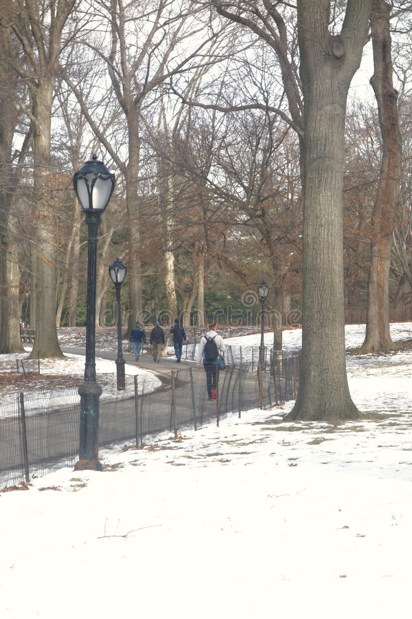 Central Park Path royalty free stock photo