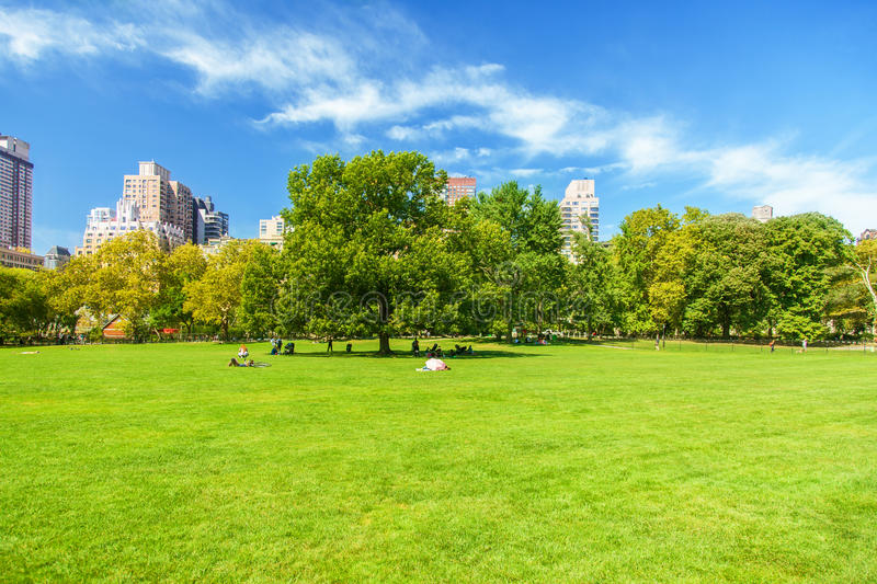 Central Park. People taking a break in Central Park New York royalty free stock images