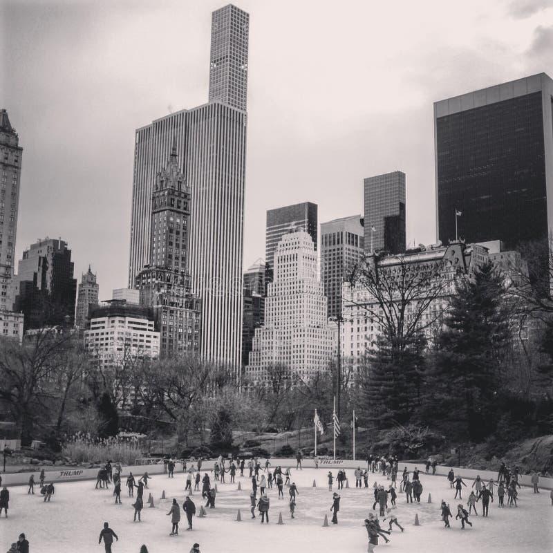 Central Park preto do branco de n foto de stock royalty free