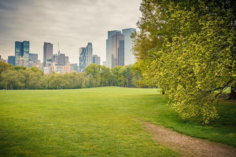 Download Central park at rainy day stock photo. Image of background - 42083546