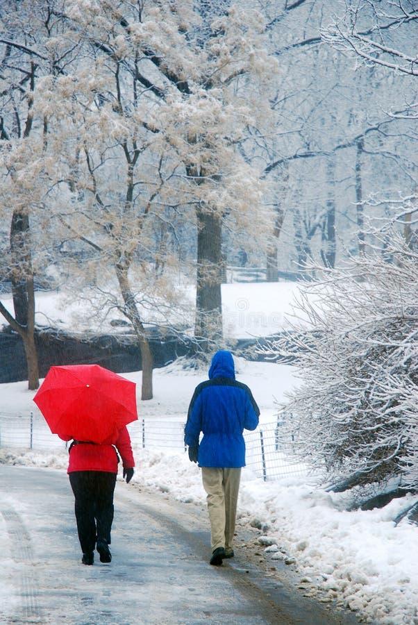 Central Park schlendern während eines starken Schneesturms lizenzfreies stockbild