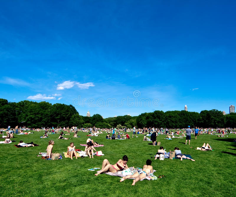 Central Park (Sheep Meadow) in New York stock photos