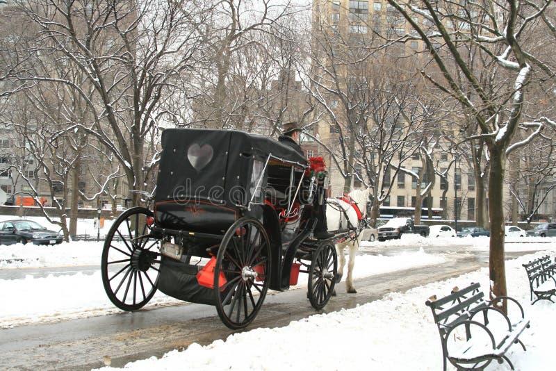 Central Park snowvinter royaltyfri fotografi