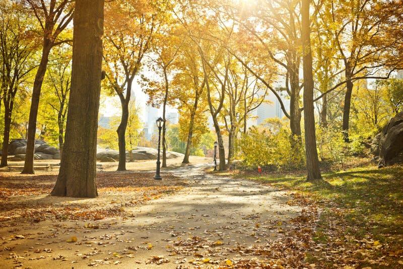 Central Park szenisch im Herbst, New York stockfotografie