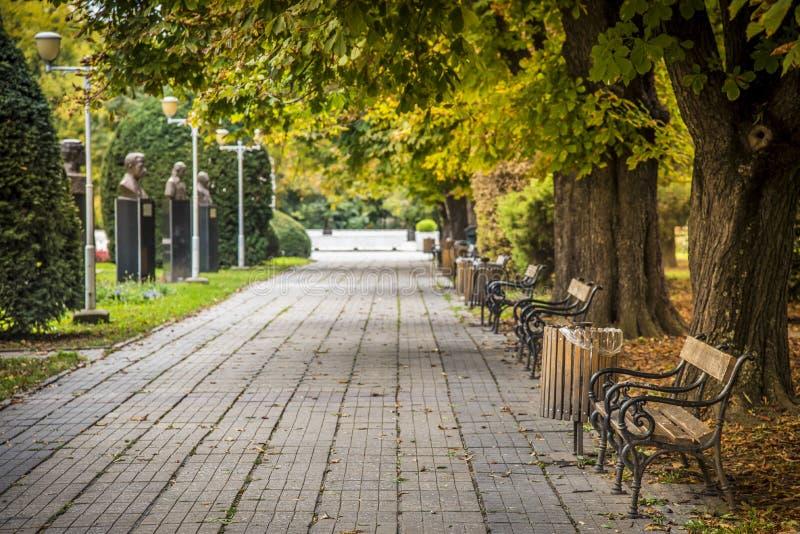 Central park in Timisoara, Romania. Autumn trees and wooden bench in Central park in Timisoara, Romania stock photos
