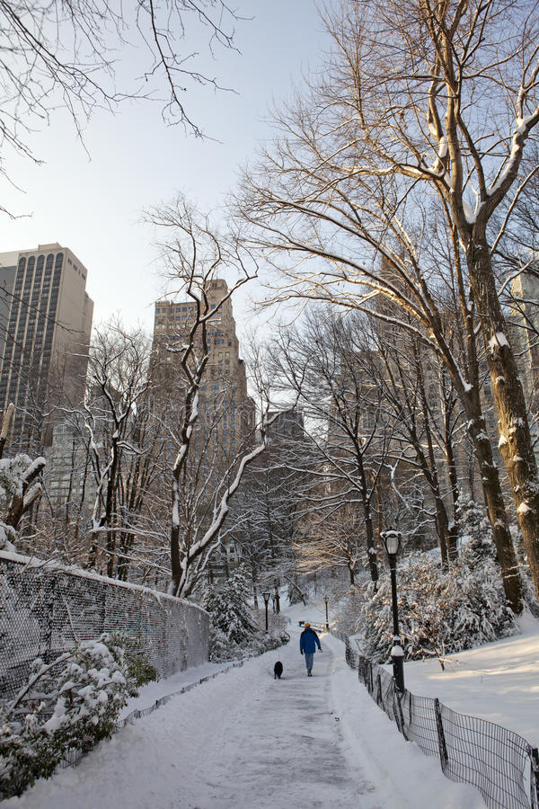 Download Central Park at winter stock image. Image of light, water - 18857557