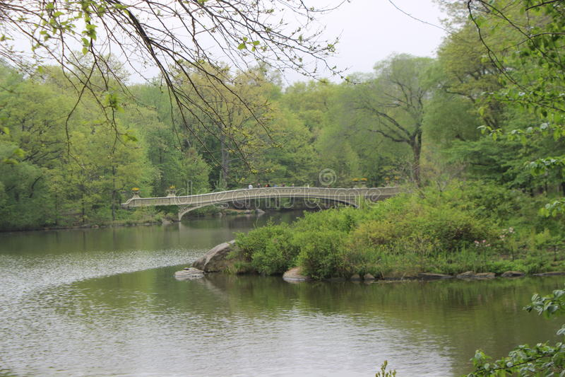 Central- Parkbrücke lizenzfreie stockfotos