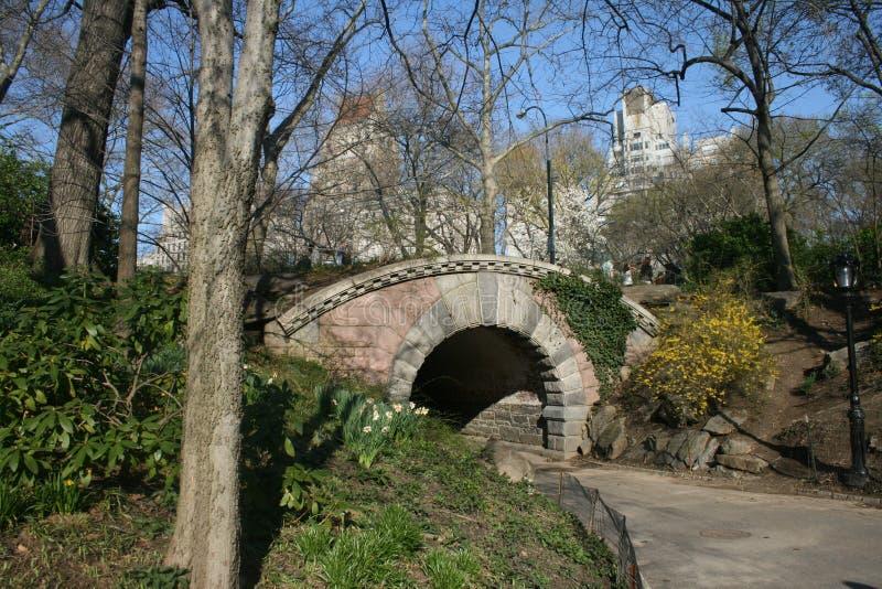 Central- Parkbrücke im Frühjahr stockfotos