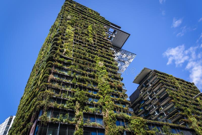 Central Parkbyggnad som är chippendale-, Sydney, NSW, Australien arkivfoto