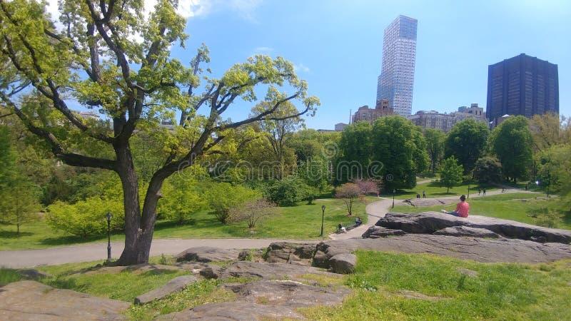 Central Parklandskapsikt royaltyfri foto