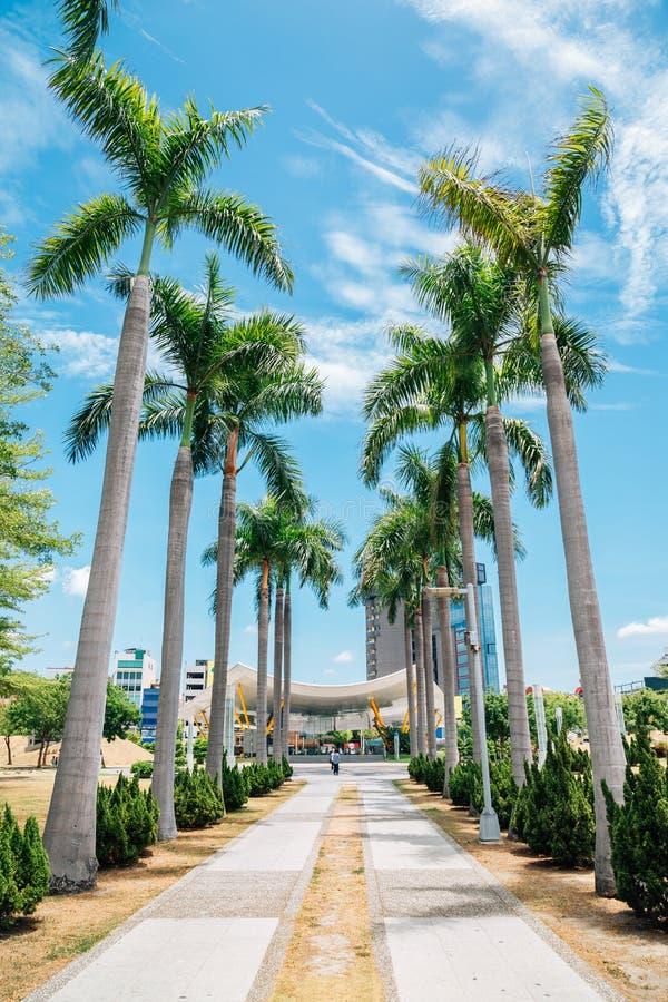 Central Parkstation och palmträd i Kaohsiung, Taiwan arkivbild