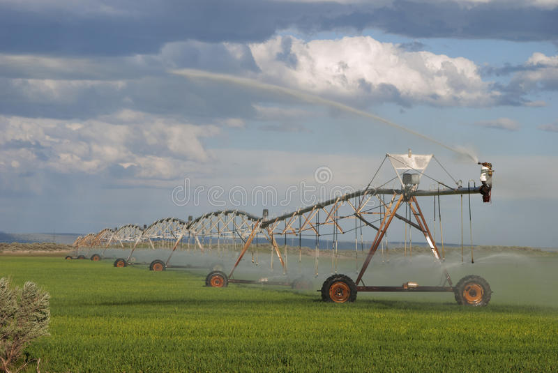 Download Central Pivot stock image. Image of agriculture, alfalfa - 39501469