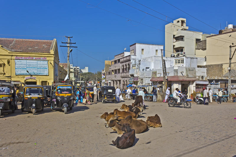 Central square in Dwarka. FEB 11, 2015, DWARKA, INDIA - Central square of sacred town Dwarka, walking people and cows on the street stock images