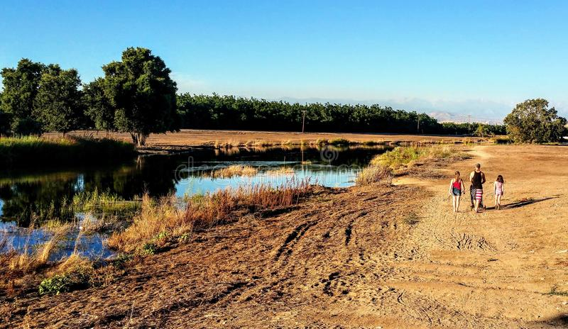 Central Valley riverbank royalty free stock photo