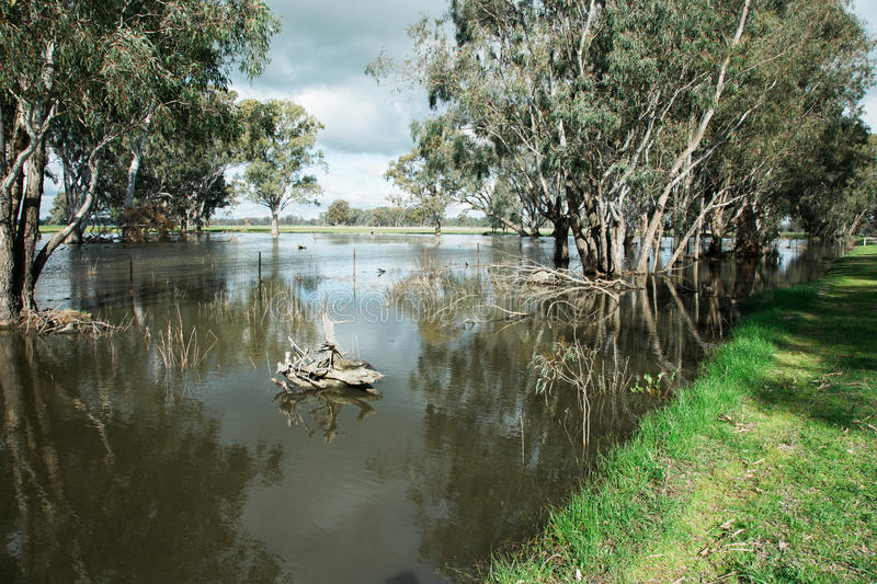 Central Victorian Floods. Flooding in the North West region of Victoria, Australia. Recent rain has been so heavy that there is standing water up to 1 metre deep stock photo
